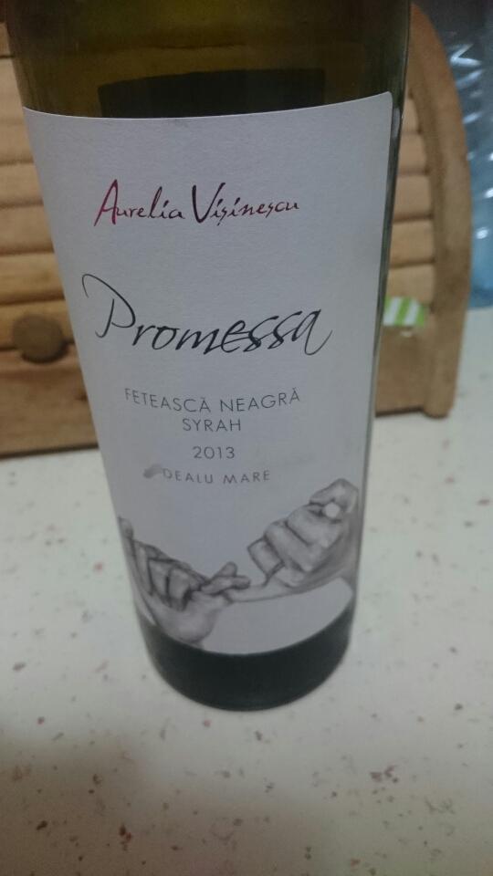 Promessa – de Aurelia Visinescu