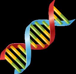Teatru scurt: Demonstrație de genetica