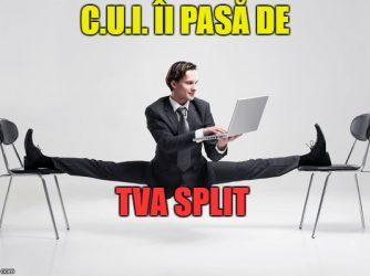 Cu TVA Split
