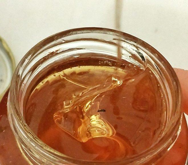 Povestea unui borcan de miere și coada lipsă a ursului