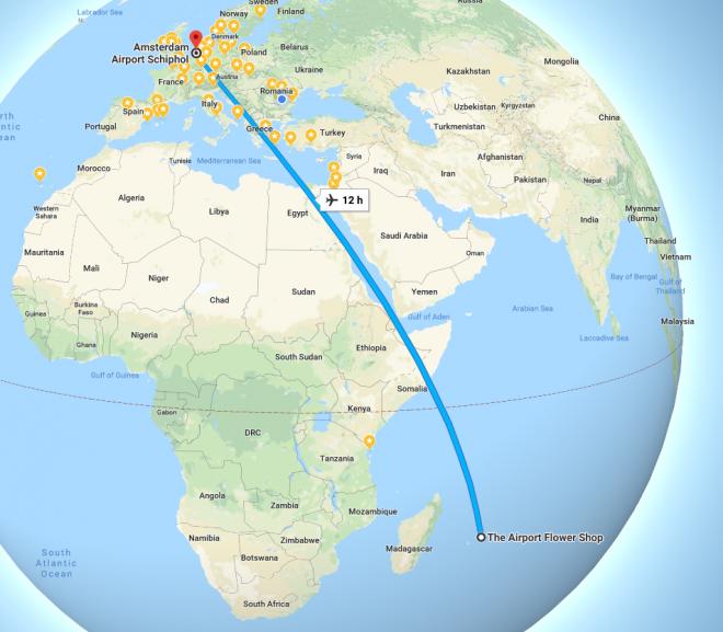 Toate liniile de zbor migreaza spre low cost ? Acum KLM.
