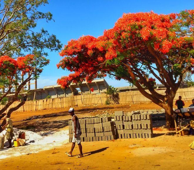 3.2 Madagascar: Mahalaua infinită: Antsiranana/ Diego Suarez