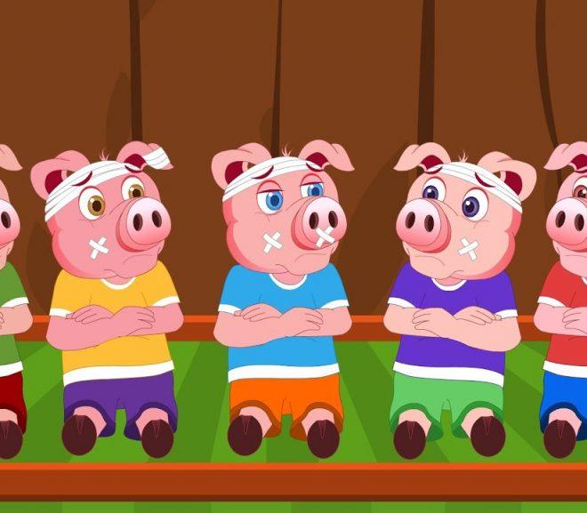 Daea: 6 porci frumoși și agricultura de subzistență