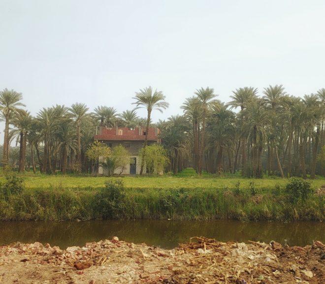Egipt.3 Saqqara – Luxuri neînțelese.