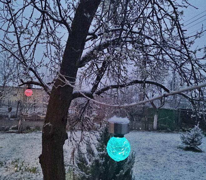 Pastel: Ninge Naiv