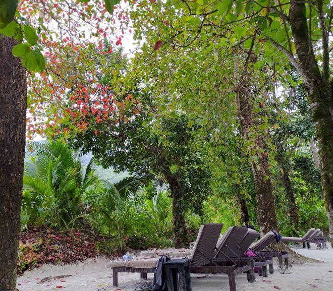 Instagramă: Seychelles – #2